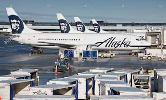 pet alaska airlines employee travel