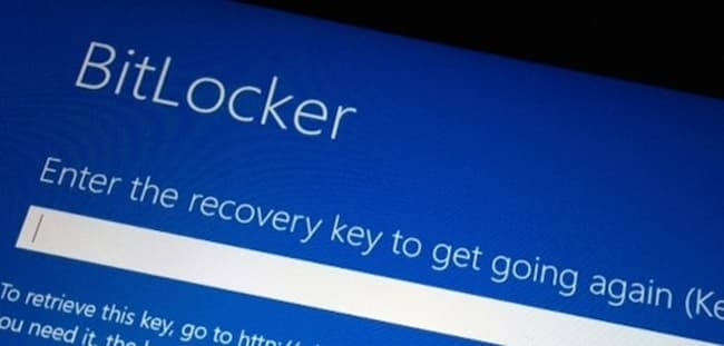 Microsoft recovery key